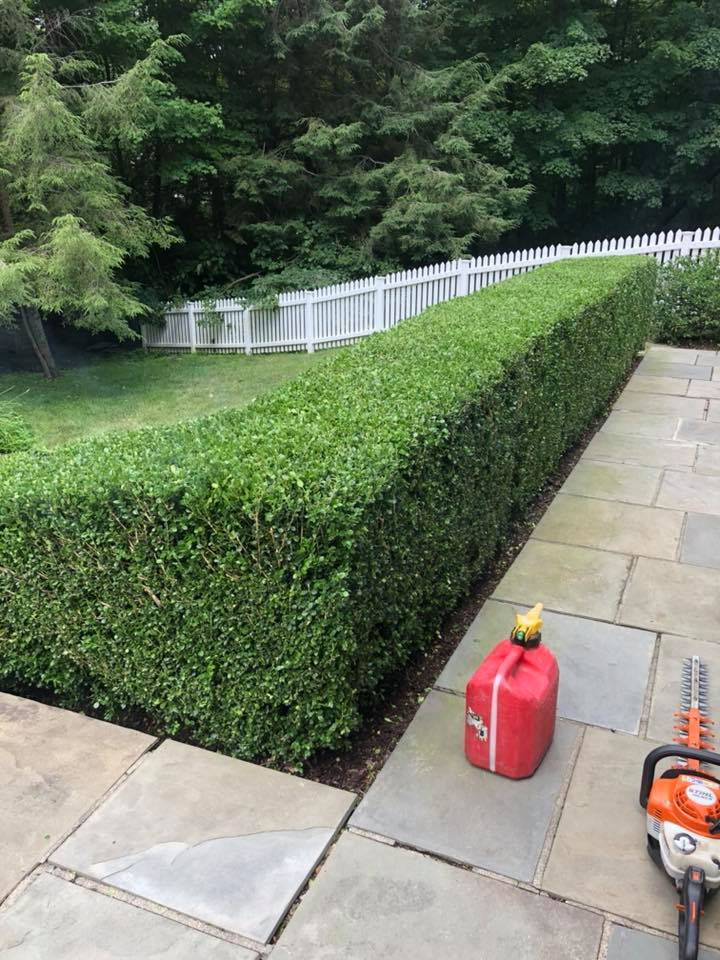 lawn maintenance brookfield ct